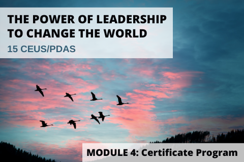 The Power of Leadership to Change the World