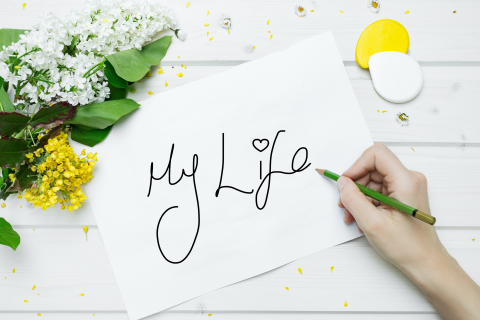My Life Review (MLR)