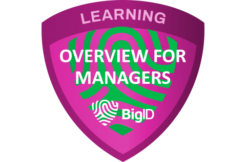 BigID Overview for Managers (Self paced - Legacy) (BIGID-S-MGRS)
