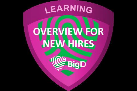 BigID Overview for BigID Employees (Self paced) (BIGID-S-NHRE)