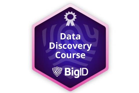 BigID Data Discovery (Self paced - Legacy) (BIGID-S-DISC)