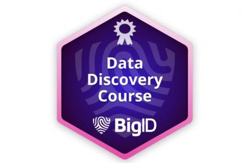 BigID Data Discovery (Self paced) ((BIGID-S-DISC))