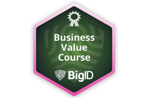 BigID Business Value (Self paced - Legacy) (BIGID-S-VALU)