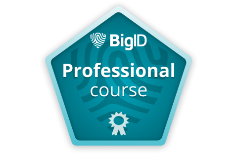 BigID Professional (Instructor led - co-bc-prof) (co-bc-prof)