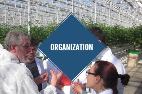 Organization (with guidance + exam)
