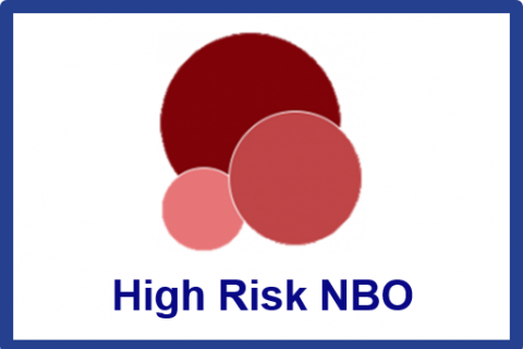 Dec.2021.High Risk Newborn Behavioral Observations system (NBO) Training Program