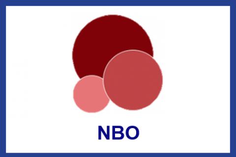 Feb.2021.Newborn Behavioral Observations system (NBO) Training Program