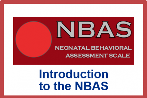 May 2021.Introduction to the Neonatal Behavioral Assessment Scale (NBAS)