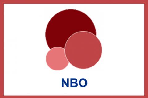 July.2021.Newborn Behavioral Observations system (NBO) Training Program