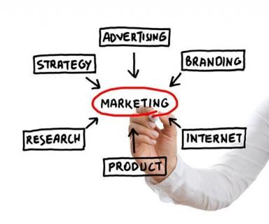 Intern Training: Marketing Plan