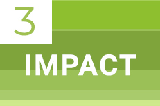 3. Impact Module