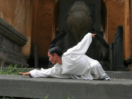Qigong Taoísta de Cinco Animales