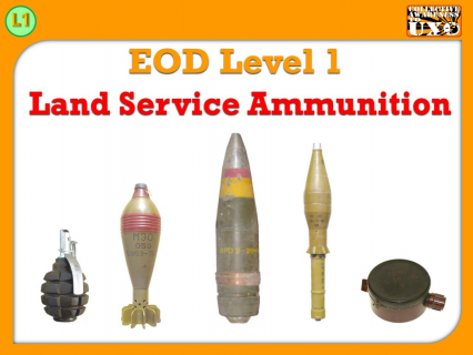 L1-02 - Land Service Ammunition (LSA)