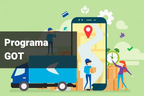 PROGRAMA GOT - Gestión Operativa del Transporte
