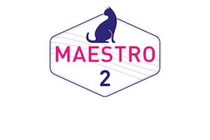 Werden Sie im 2. Level zum Maestro!