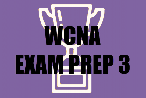Exam Prep Guide (WCNA) - Practice Questions 207-304 (epg102)