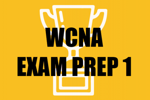 Exam Prep Guide (WCNA) - Practice Questions 1-100 (epg100)