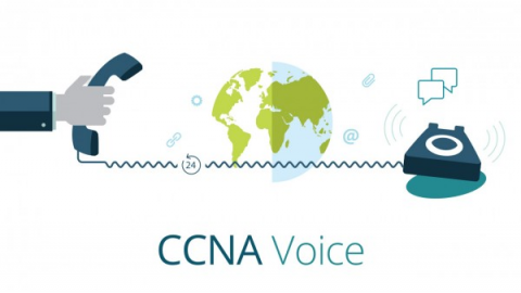 Cisco Voice and Unified Communications Administration