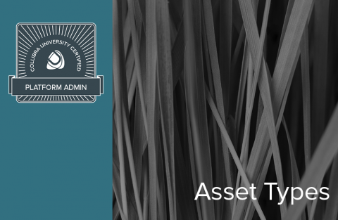 Asset Types (04-pa-100)