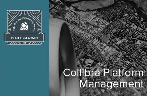 Collibra Platform Management (04-pa-002)