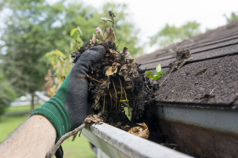 How to Safely Clean Gutters