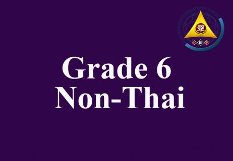 Grade 6 Non-Thai Level 4