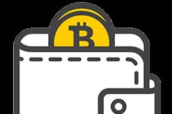 Bitcoin Wallet Guide
