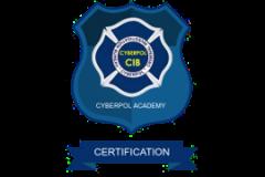 CYBERPOL CYBER ESSENTIALS CERTIFICATION Cyber Security Essentials Awareness Training-Level II