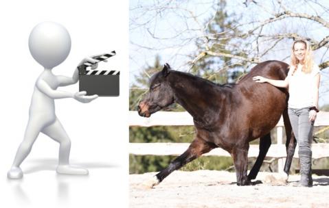 Basiskurs mit Videocoaching