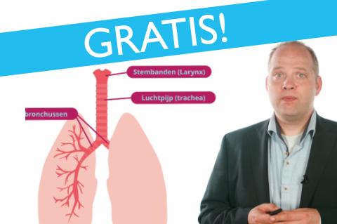 Anatomie van de longen (e-learning) **GRATIS**