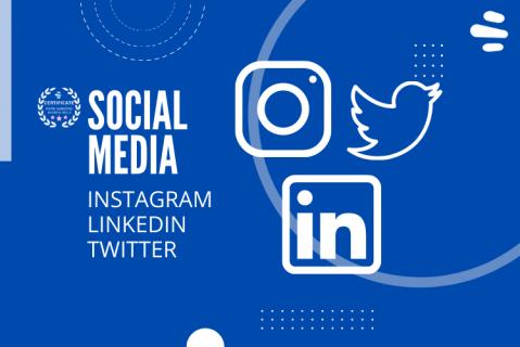 SOCIAL MEDIA - INSTAGRAM, LINKEDIN, TWITTER (smfb-itl)