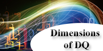Introduction to the Dimensions of Data Quality (1010)