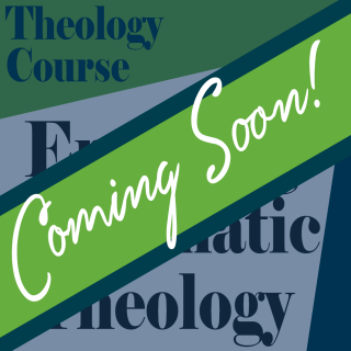 Engaging Systematic Theology
