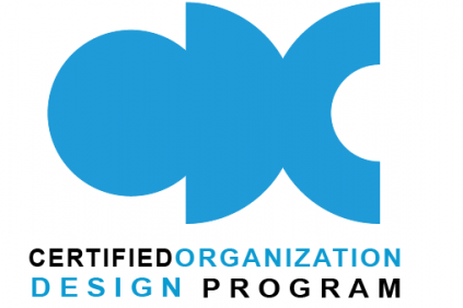 Become an organizational designer