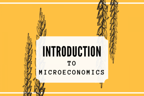 (A) Introduction to Microeconomics