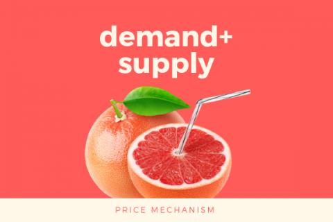 (B) Demand & Supply