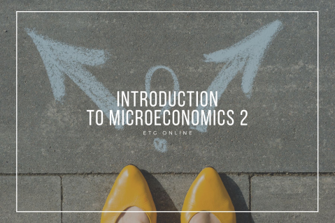A2 - Introduction to Microeconomics 2 (A2)