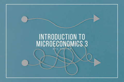 A3 - Introduction to Microeconomics 3 (A3)