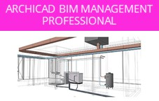 ARCHICAD BIM Management Professional - M2 (2-C8-GSM2)