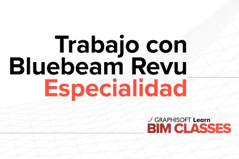 Colaboración Consultores Revu Bluebeam - ARCHICAD (E06)