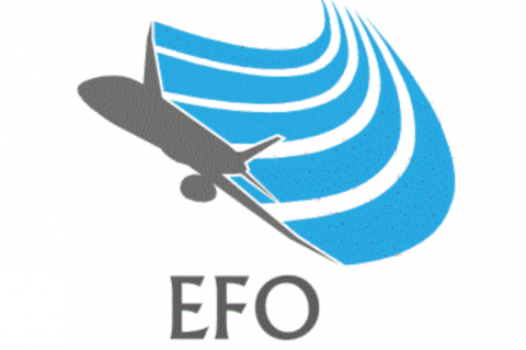 EFO Company Induction (EFO QA 01)