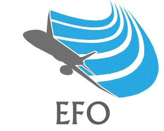 EFO College Introduction course