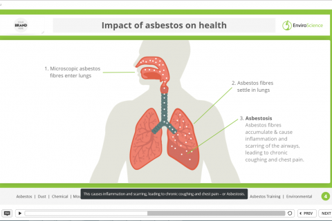 Asbestos Awareness Training - Sample