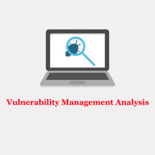 IT Security Gumbo: Vulnerability Management Analysis (DVITVulnerability)