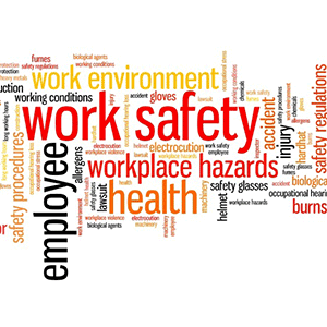 Workplace Health and Safety (RISK ASSESSMENT) (WHS)
