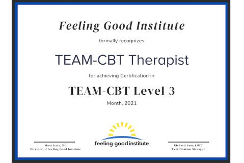 Level 3 TEAM-CBT Application
