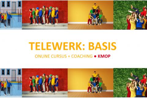 Telewerk: Basis + Coaching