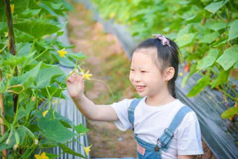 Teaching Foster Children to be Environmentally Conscious (GREENnotopen)