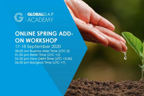 17-18 September 2020 | SPRING Add-on Workshop | English (37-237)