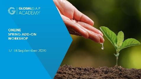 17-18 September 2020 | SPRING Add-on Workshop | Online (37-237)